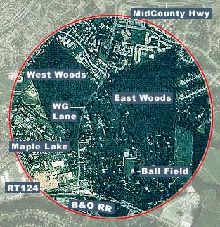 Arial photo of grove with east and west woods identified